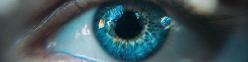 Weet-u-al-hoe-het-ZMOT-van-uw-klanten-er-uit-ziet-800x200 Blogs